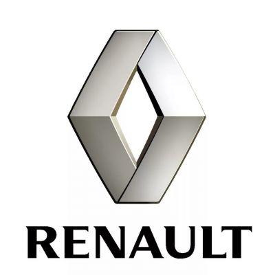 Ключи для Renault. Чип ключи Рено. Программирование, дубликаты. Duster, Logan, Kaptur, Sandero, Megane